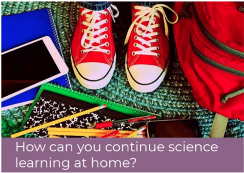 Students Doing Science at Home